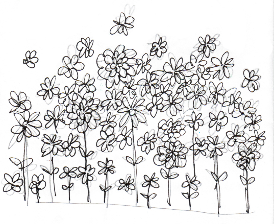 Essex Flowers (Doodle by Amy Guglielmo on July 23, 2013)